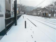 雪です・・・・