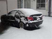久々の降雪