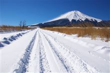 富士山 雪遊び