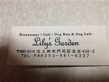Lily's Garden に行ってきました