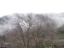 二十四節気の雨水の日の京都