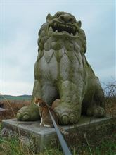 阿蘇の巨大狛犬さん