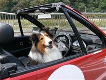 自分の軽自動車歴を振り返ってみる