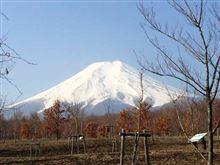 富士山見えてヨカッタ!