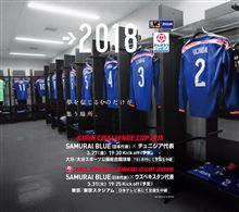 サッカー日本代表  チュニジア戦   〜大銀ドーム〜