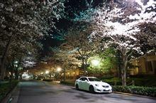 東京の桜はまだかなぁ(^_^)