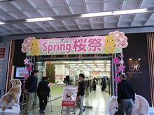 うさFesta2015 Spring桜祭