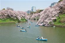 千鳥ヶ淵 うめつくす、桜・人・ボート