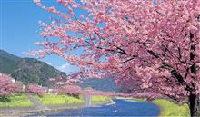ついに、春突入しました。(^_^)v