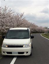 「やっとホイール付きました!…トップ画像は桜とのコラボです♪」