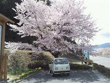 春といえば、パン祭り、春の交通安全週間だけじゃない、春の変態さんの集い、パンパン祭りはじまるよ~\(^o^)/