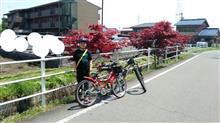 息子と一緒に、サイクリング\(^o^)/