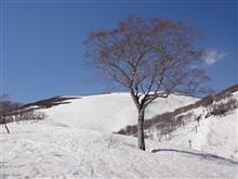 春の「月山」スキー♪