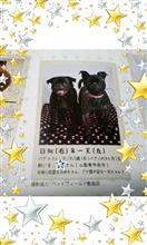 〈愛犬〉ひなちゃんと一天君、ペット冊子に載る。