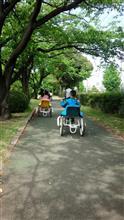 タイヤ屋さん巡り&久喜菖蒲公園