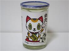 カップ酒1011個目 白老トコタンカップ 澤田酒造【愛知県】