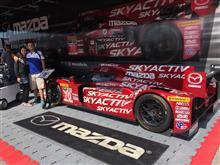 Tudor championship at Mazda raceway Monterey,ca