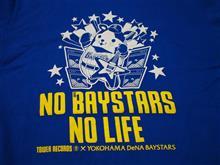 2015ベイスターズ観戦記③(vs BUFFALOES 15.05.26 at Yokohama )