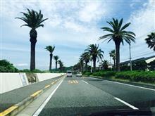 Navy Drive