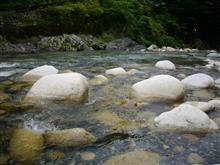 愛知川上流に釣りにいってきた