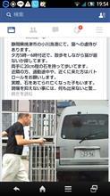 焼津小川港 猫虐待事件発生!