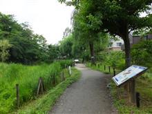 国分寺・姿見の池