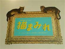 猫まみれ(≧▽≦)