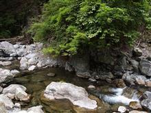 上北山村をウロウロしてみた。