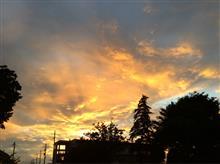 昨日の夕焼けと虹