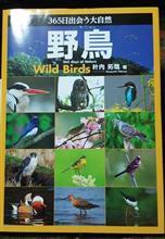 『365日出会う大自然   野鳥』
