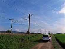 新潟県三条市金子新田(信越本線)