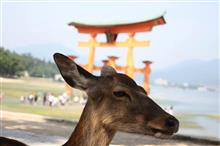 広島に行っとったんじゃけぇ。