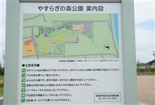 新しい公園発見