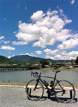 嵐山...((((=・o・)ゴーゴー♪