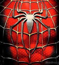 蜘蛛発生。。。