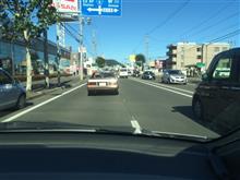 ☆ 札幌のクルーズ 朝イチ 車窓から THEハングマン編! ☆
