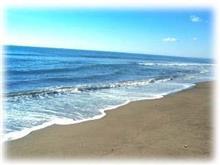 海が見たいの〜
