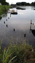 減水 柴山沼
