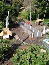 イチゴの植える場所を確保した。