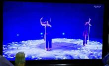 WOWOW版『Perfume Anniversary 10days 2015 PPPPPPPPPP「LIVE 3:5:6:9」』