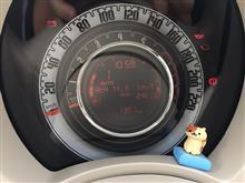 セルフ給油バッチコイ&まる太郎、初めての猫ドライブ(=´ω`=)