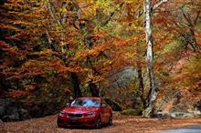 昇仙峡・みずがき・八ヶ岳へ紅葉ドライブ♪