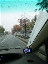 初雪を観測