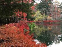 軽井沢の紅葉と別荘