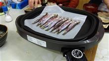 柳葉魚を食べに行ってきました。