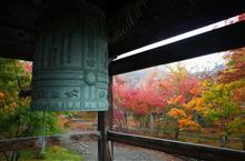 北信濃の秋を探しに朝の称念寺へ