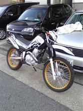 新車購入、バイクですが。