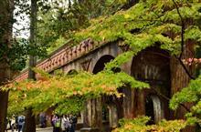 京都に紅葉を見に行こうよう♪