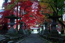 朝活~紅葉のトンネルを眺めに静かな山間のお寺へ~