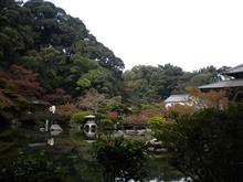 紅葉を探しに長府庭園と秋吉台に行って来ました